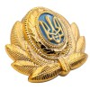 Ukraine Air Force Aviation Officer hat badge insignia 5