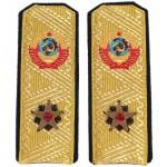 Desfile de alto rango hombreras URSS flota de la marina Admirals