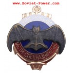 Soviet VMF Special Assignment Troops BADGE Naval Fleet