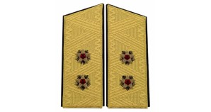 Soviet Naval VICE - ADMIRAL parade uniform shoulder boards