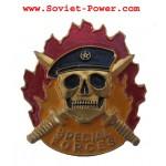 SPECIAL FORCES metal Badge SPETSNAZ Black Beret SWAT
