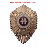 Ministry of Internal Affairs INSTRUCTOR special BADGE