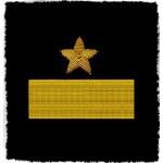 SOVIET FLEET RUSSIAN NAVY 2 OFFICERS SHOULDER PATCHES