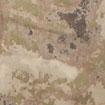 砂の迷彩 (5)