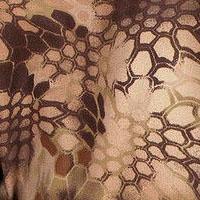 Python Rock