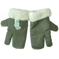 Winter Gloves +$50.00