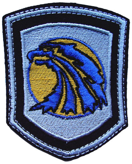 Mercenaries Stalker patch with eagle 116