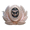USSR Navy badge cockade with anchor