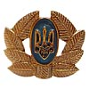 Ukraine Army Officer insignia hat badge 3