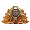 Ukraine Army Officer insignia hat badge 4