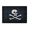 Piracy flag with Jolly Roger emblem