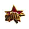 Soviet SWAT military badge (Star with AK)