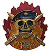 SPECIAL FORCES metal Badge SPETSNAZ Black Beret SWAT