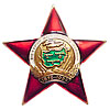 Military Badge PARTICIPANT OF AFGANISTAN WAR Red Star
