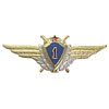 USSR AIR FORCE Badge 1-st class MILITARY PILOT