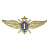 Russian Air Force 1st class proficiency badge VVS