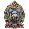 Russia VDV Division SPETSNAZ Metal BADGE Military SWAT
