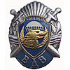 Russia VDV Division SPETSNAZ Metal Badge SWAT Swords