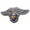 Russian Air-Landind Forces Badge VDV Division US Eagle