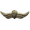 Russian VDV SPETSNAZ Metal Paratrooper badge wings SWAT