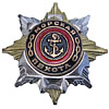 Sea Infantry MARINES Award BADGE Navy Star with ANCHOR