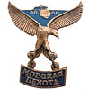 Russian Metal MARINES Award badge Sea Infantry Eagle